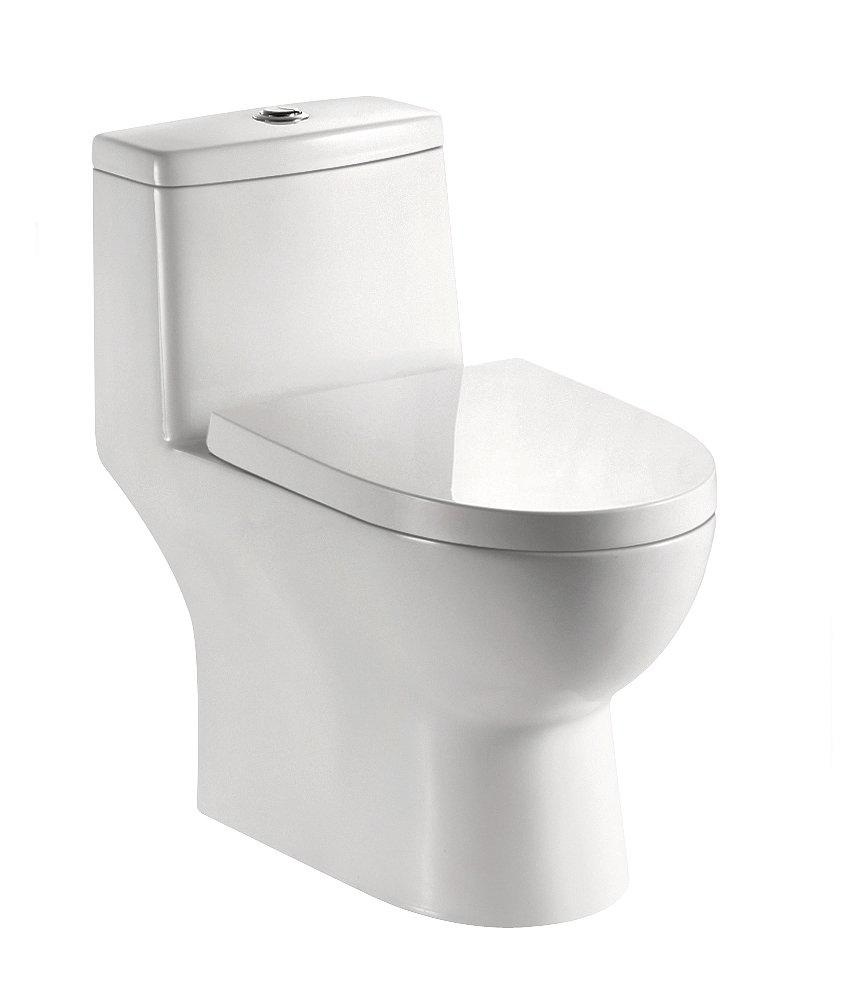 5601 S Trap One Piece Siphonic Toilet 300 Roughing-In,Including Fitting