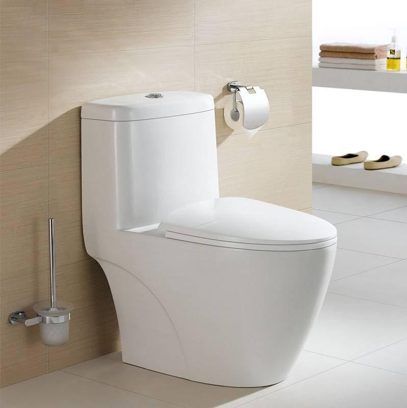 2431 Siphonic One-Piece Toilet S-Trap 305mm Roughing - In With Plastic Cover