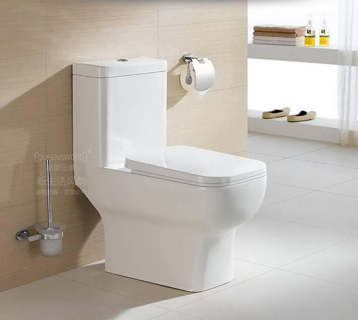 7002 S Trap One Piece Siphonic Toilet 300 Roughing-In,Including Fitting