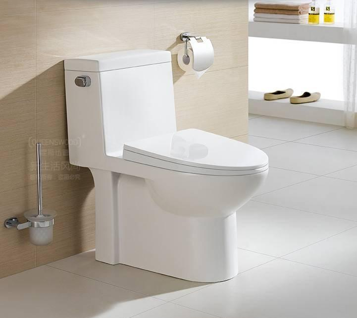 5603 S Trap One Piece Siphonic Toilet 300 Roughing-In