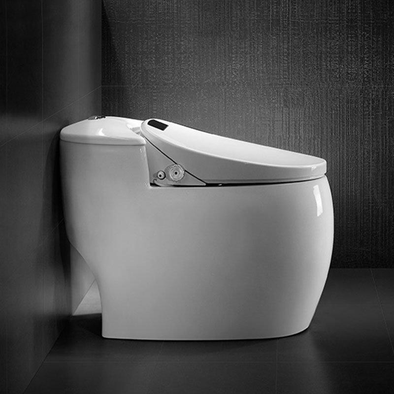 Intelligent Toilet QW-112901
