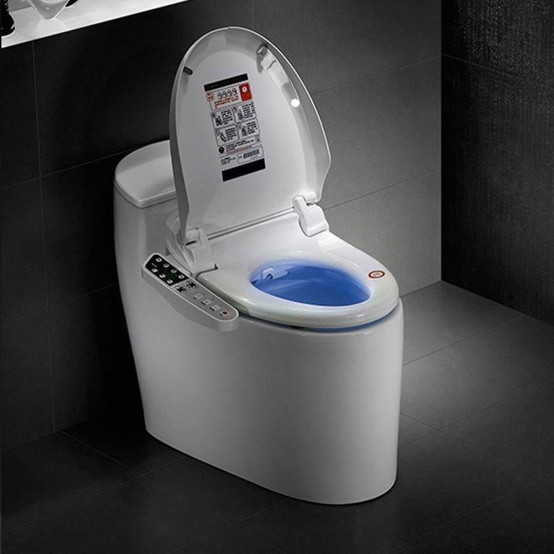 Intelligent Toilet QW-11295599