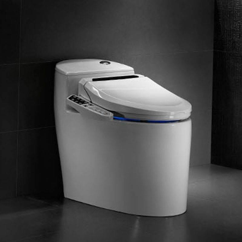 Intelligent Toilet QW-11295599